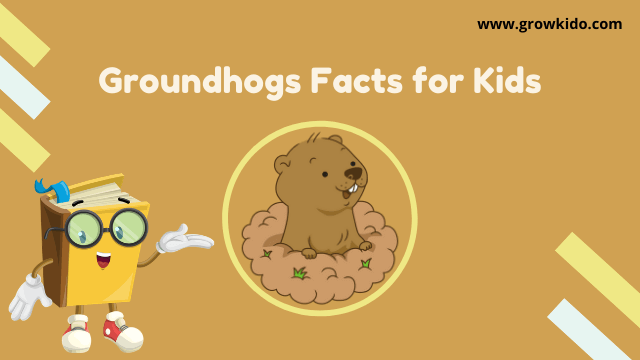 11 Amazing Groundhogs Facts for Kids [UPDATED Facts]
