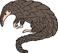 Interesting Facts about Pangolins for Kids