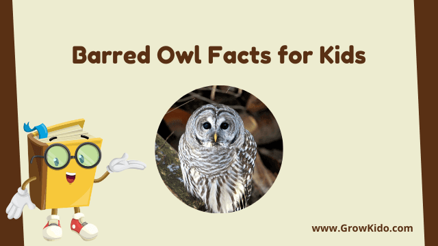 11 Amazing Barred Owl Facts for Kids [UPDATED Facts]