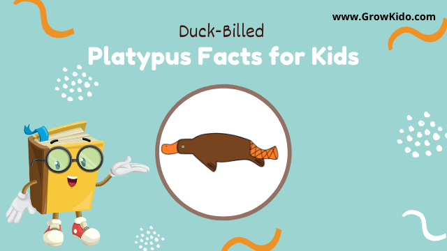 11 Amazing Platypus Facts for Kids