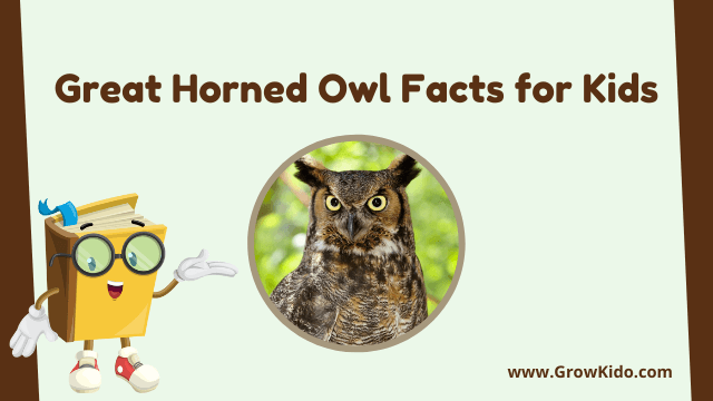 11 Amazing Great Horned Owl Facts for Kids