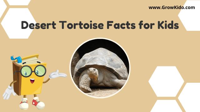 11 Amazing Desert Tortoise Facts for Kids