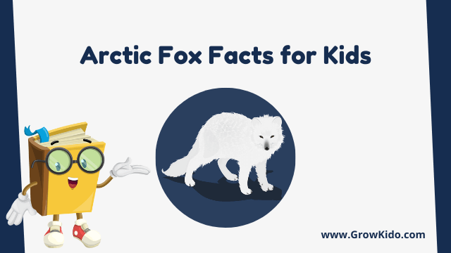 11 Amazing Arctic Fox Facts for Kids [UPDATED Facts]