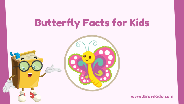 11 Amazing Butterfly Facts for Kids [UPDATED Facts]