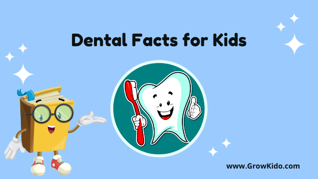 11 Most Surprising Dental Facts for Kids [UPDATED Facts]