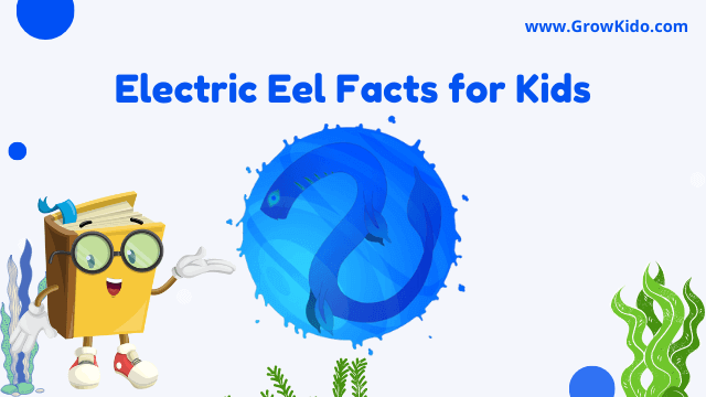 11 Amazing Electric Eel Facts for Kids [UPDATED Facts]