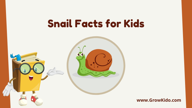 11 Amazing Snail Facts for Kids [UPDATED Facts]