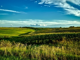 interesting facts about iowa for kids