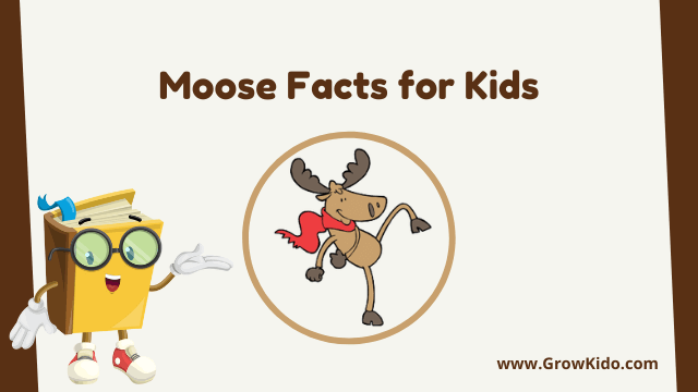 11 Amazing Moose Facts for Kids [UPDATED Facts]