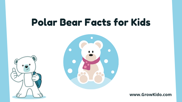 11 Amazing Polar Bear Facts for Kids [UPDATED Facts]